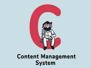 Content-Management-System curated by thedigitalfellowacademy