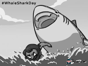 30th August WhaleSharkDay